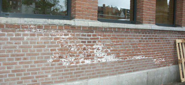 doorslaand vocht op muur
