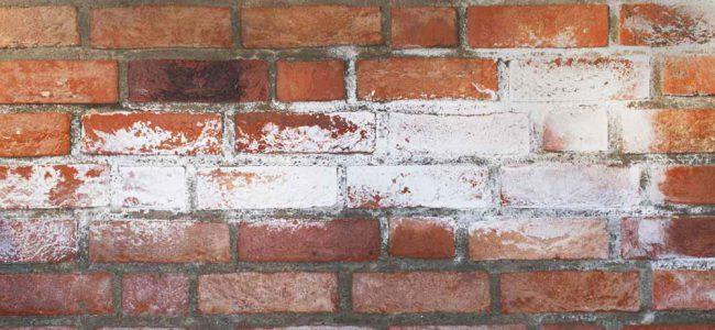 muur met vochtschade